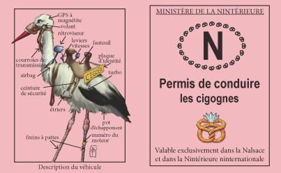 permis-conduire-cigognes-recto