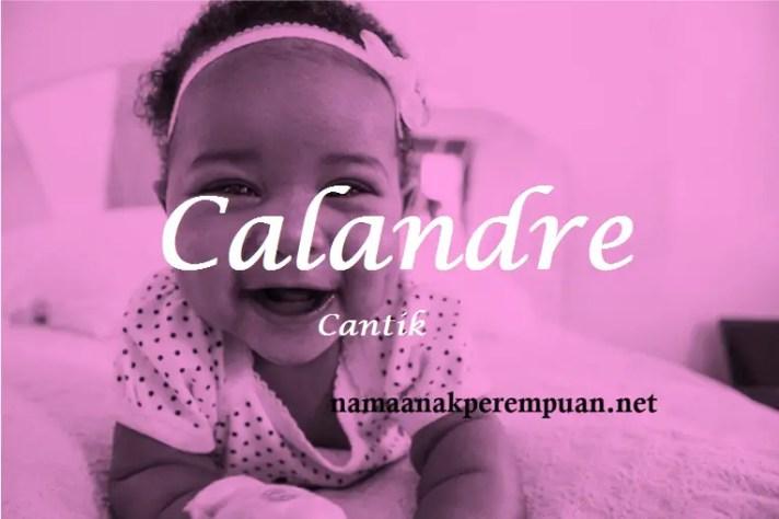 arti nama Calandre