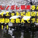 ダレノガレ明美4
