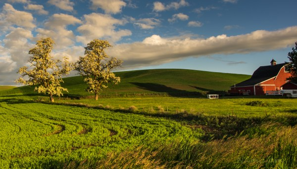 Beautiful Farm Landscape