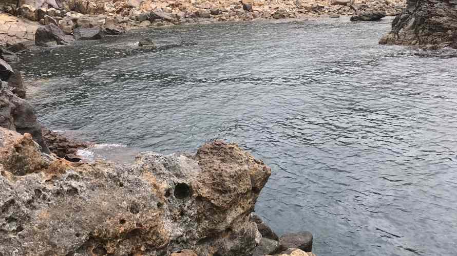 白浜小島の釣り場紹介