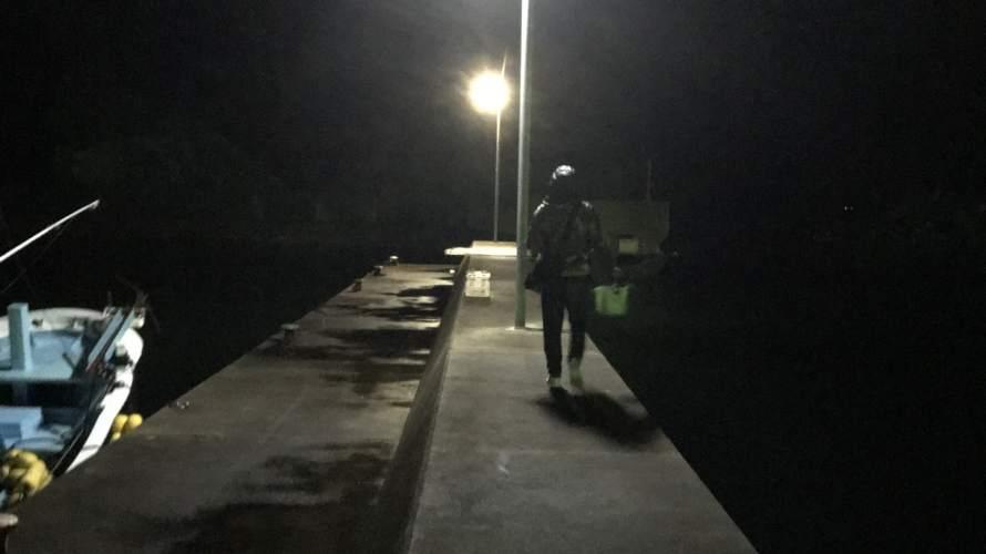 安指漁港の常夜灯でエギング