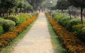 buddha-jayanti-path