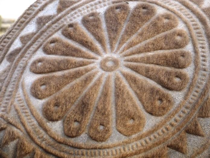 camel-circle