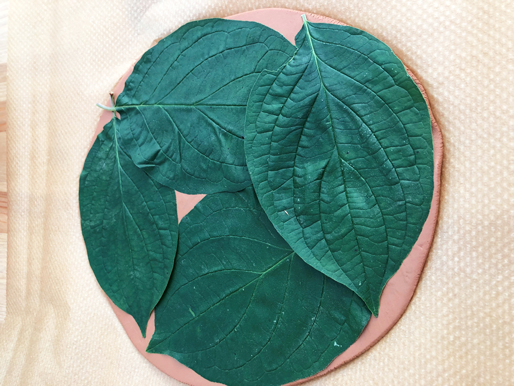 Leaf Print Clay Bowl - Step1