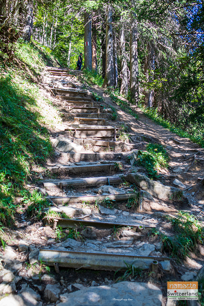Hiking path near the Seeaplsee