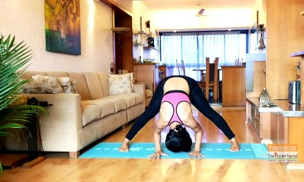 'Prasarita padottanasana' or the wide leg forward bend