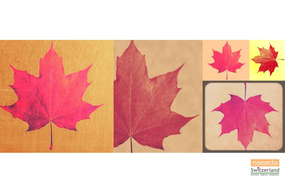Illustration depicting Color me Autumn by Sharanya Mageshwaran