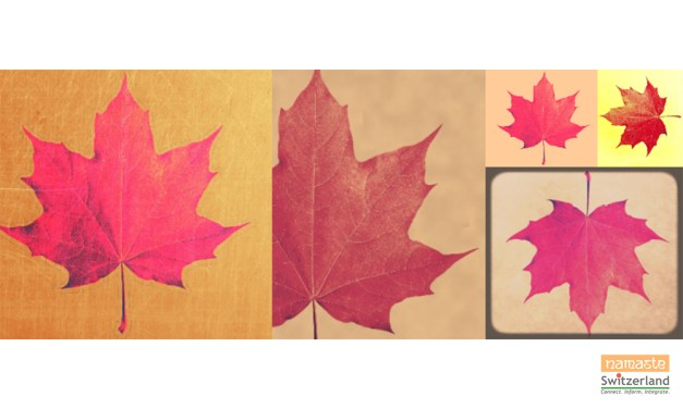 Color me Autumn!