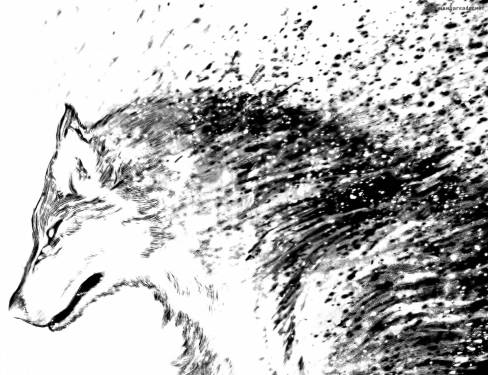 wolf-guy-ookami-no-monshou-3203997