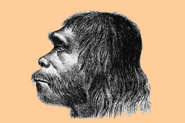 Neanderthal people