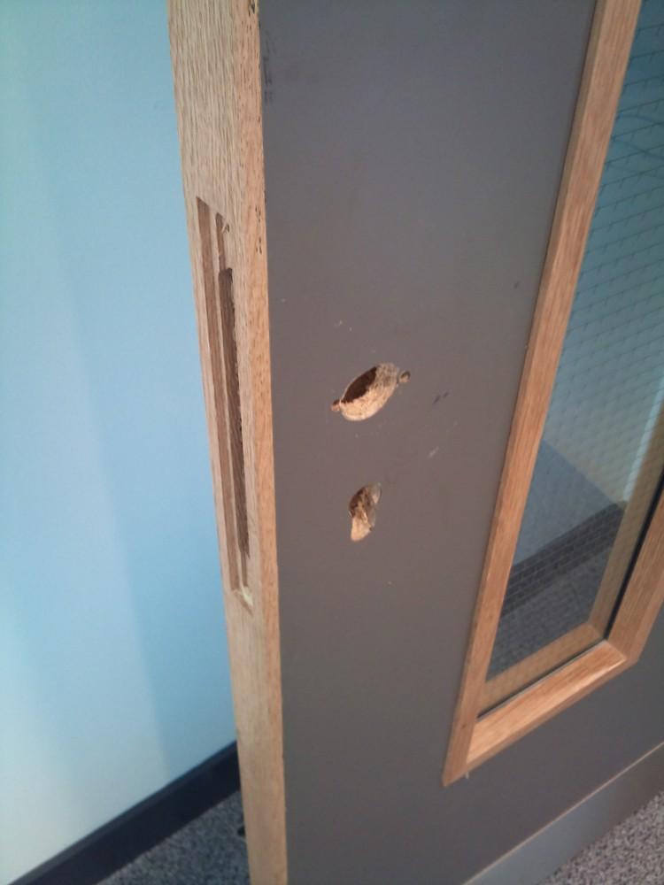 VENEER DOOR REPAIRS & FRENCH POLISHING - Namco Refurbs