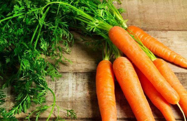 tiểu nhân sâm (cà rốt)