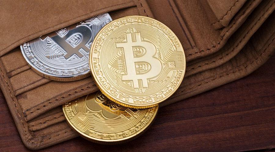 SBI Wallet.jpg