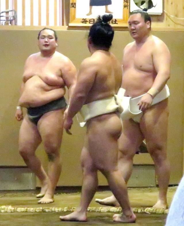【画像】石浦と宝香鵬が殴り合い喧嘩!白鵬が仲裁に・・ネットの声は