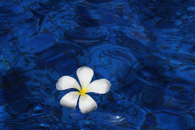 ハワイアンジュエリーの『ワイレア』とは?魅力や種類など