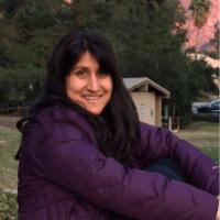 Sangita Shresthova