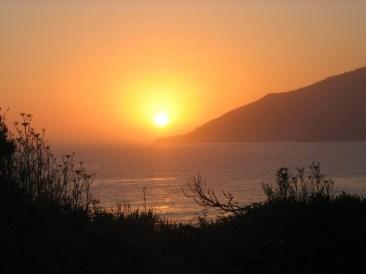 california 288