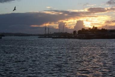 Sunset in Hamilton. Pretty.