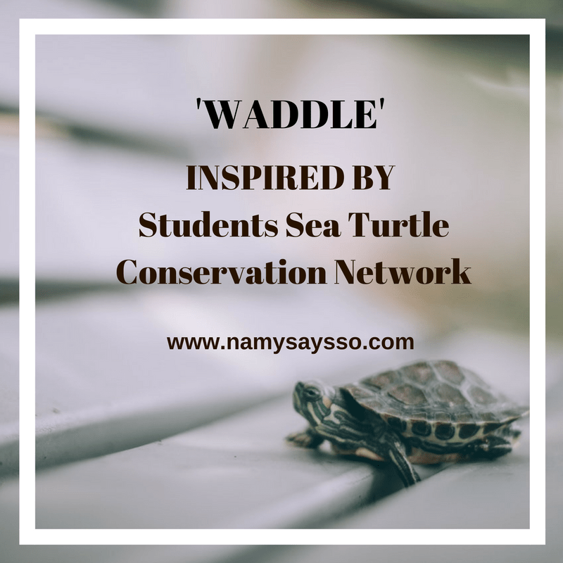 Waddle: Inspired By Students Sea Turtle Conservation Network #AtoZChallenge #BlogChatterA2Z #NaPoWriMo