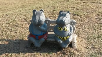 A hippo-notic welcome!