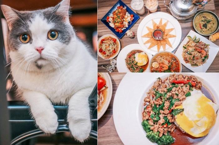 員林 泰之飲泰式家鄉菜。百元泰式料理!貓店長陪你玩,泰國人好手藝,打拋豬肉飯,月亮蝦餅