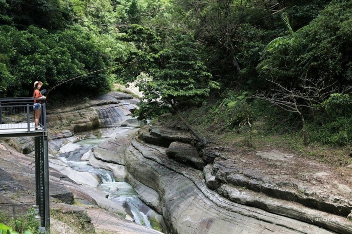 雲林古坑:草嶺萬年峽谷。免出國台版大峽谷,鬼斧神工自然天然景觀