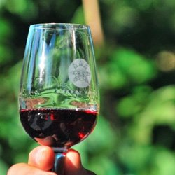 Cowichan Valley Wine Tours