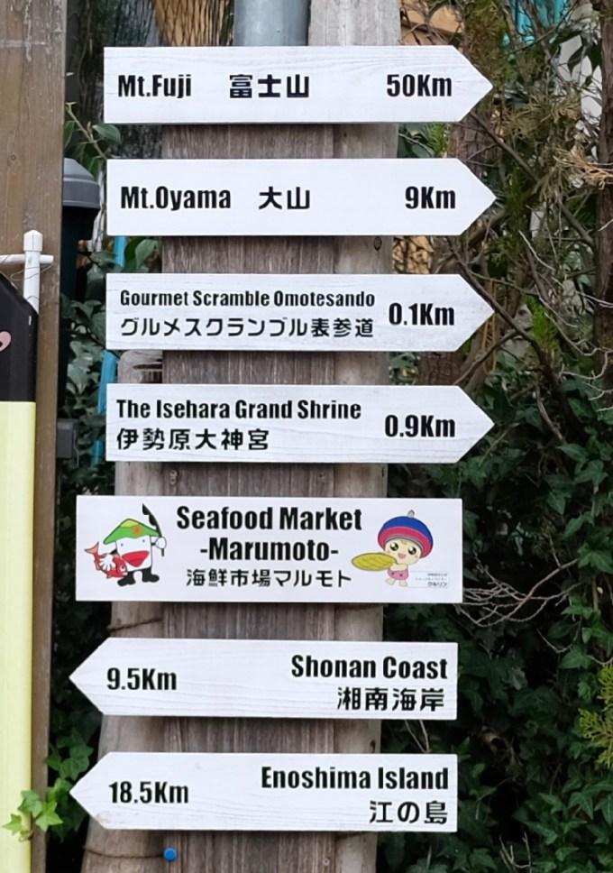 富士山大山矢印