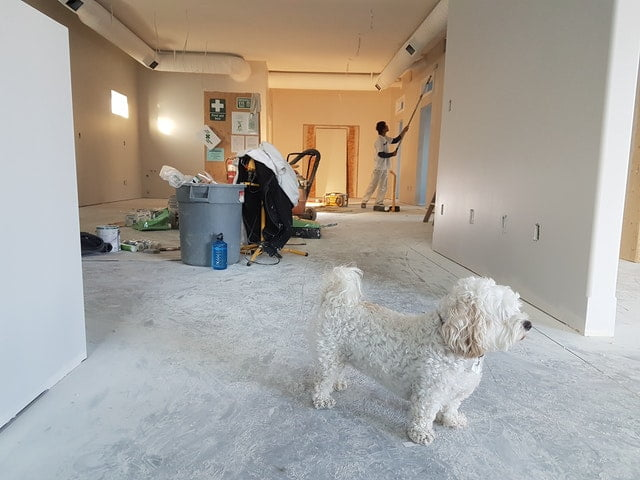 5 Home renovating tips from the experts