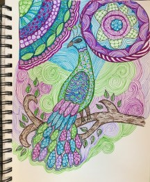 peacock unfinished