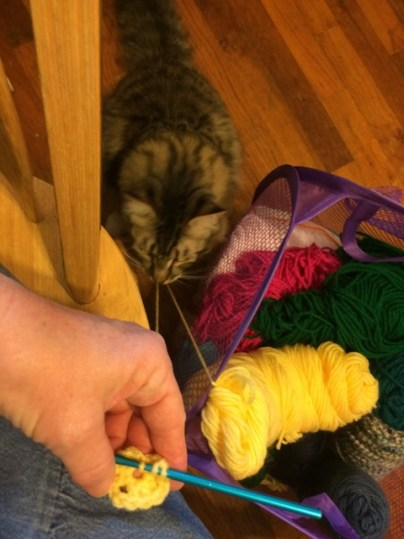 Foster with crochet