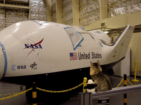 looking at shuttle2