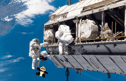 space walk together2