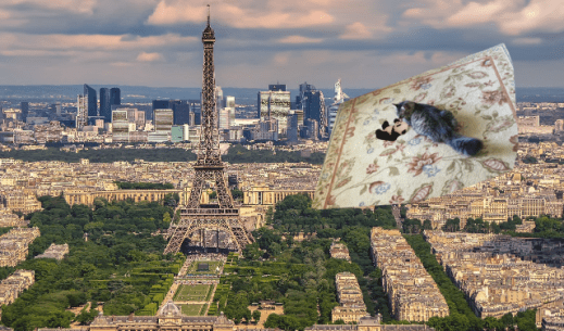 flying into paris small