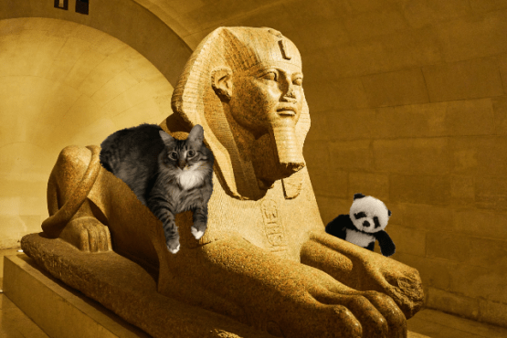 on top of sphinx with panda small
