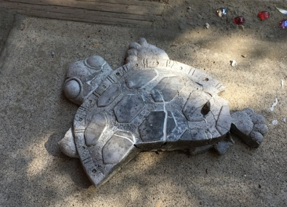 gluing turtle