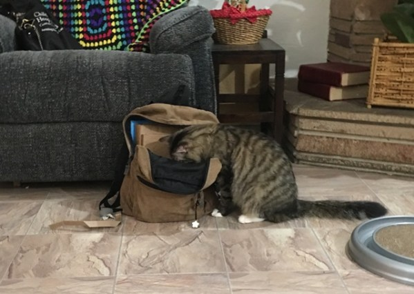 looking in backpack