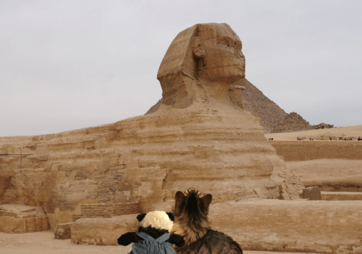 a seeing the sphinx