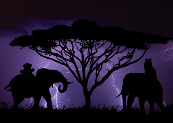 a storm and elephants