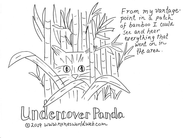 a undercover