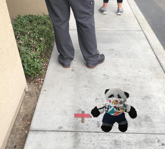 a panda points to line