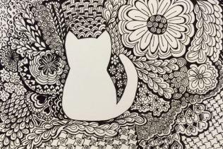 hospital cat small