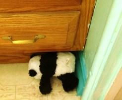 panda-on-floor