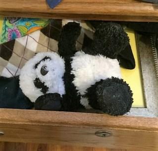 panda-in-drawer
