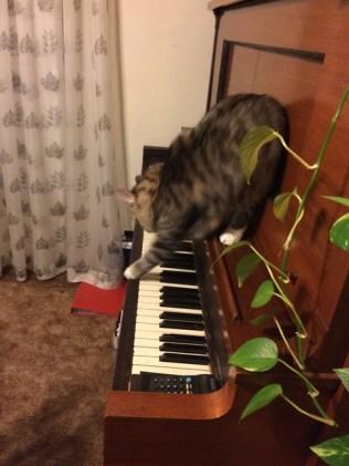 a-piano-2