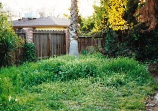 back-yard-a