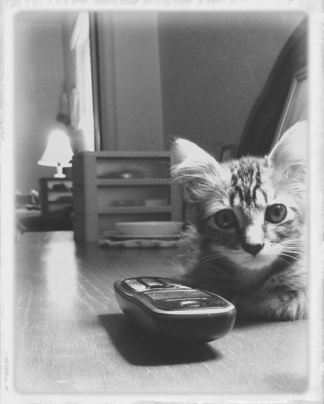 by-phone-bw-2