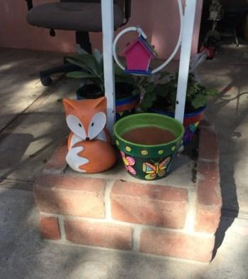 little fox in sun