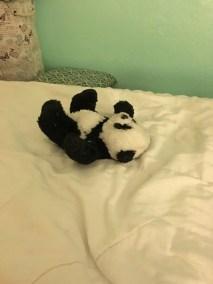 panda on bed